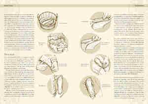 Bild Nr. 3 Kleidung des Mittelalters Schuhe des Hoch-und Spätmittelalters