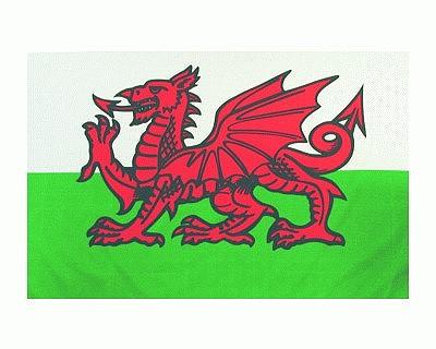 Flagge Wales Abb. Nr. 1