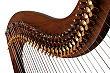 Musikinstrumente Keltische-Harfen-Shop Harfe Alyssa - 34 Saiten Halbtonklappen Schnitzereien