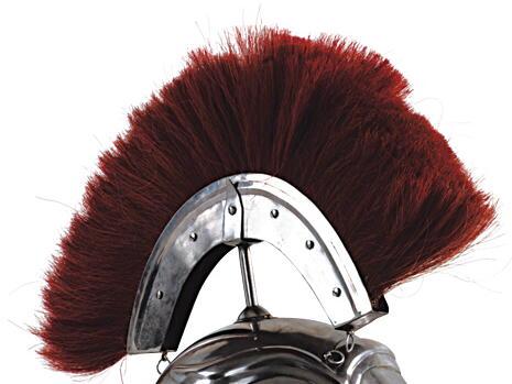 Bürste für römischen Helm
